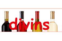 Blog Divins