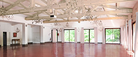 Chateau Grand Boise: Large meeting hall